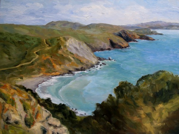 Early Spring Muir Beach Overlook California by Terrill Welch