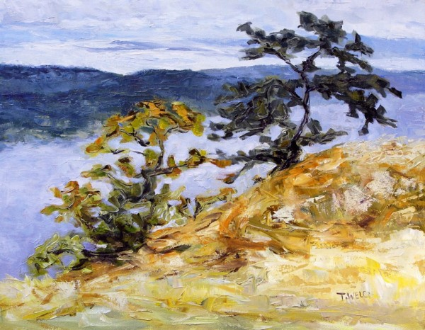Garry Oaks on Brown Ridge by Terrill Welch