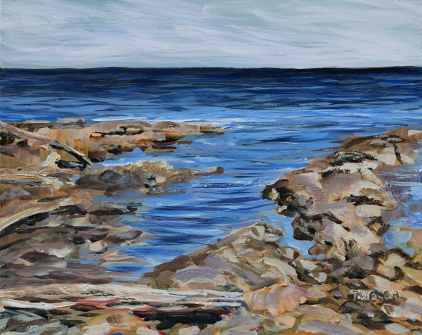Light Sea and Sandstone at Reef Bay by Terrill Welch