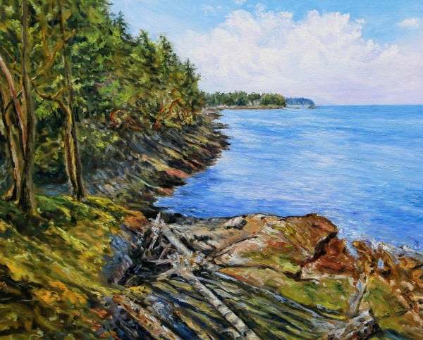 Lost in the Light Edith Point Mayne Island by Terrill Welch