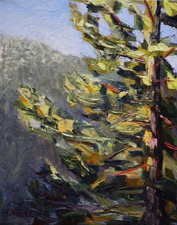 Morning Greets Fir Tree Study by Terrill Welch