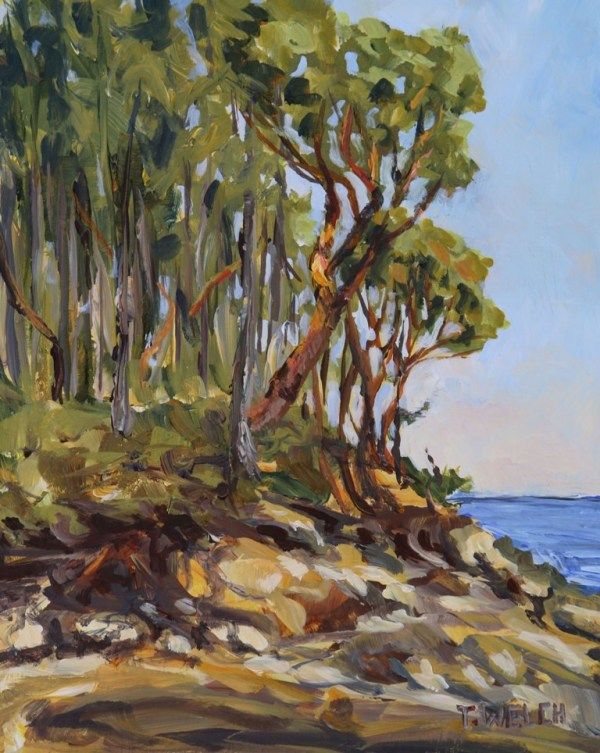 Morning Oyster Bay  by Terrill Welch