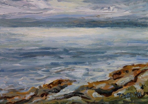 Morning Sea Strait of Georgia  by Terrill Welch