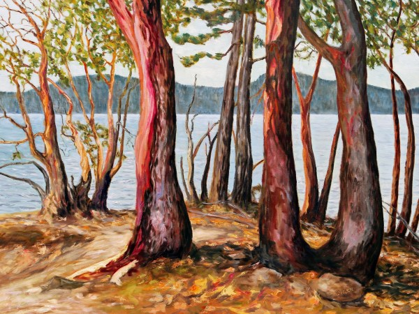 Morning With Arbutus Trees by Terrill Welch