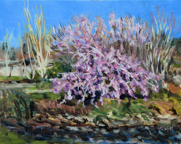 Plum Blossom Afternoon by Terrill Welch