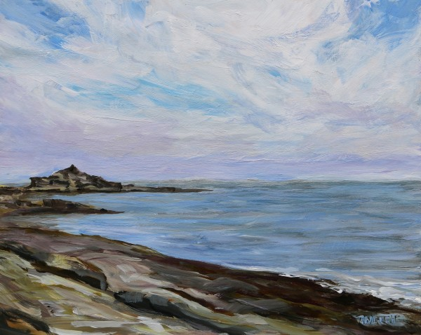 Reef Bay Looking Towards Oyster Bay by Terrill Welch