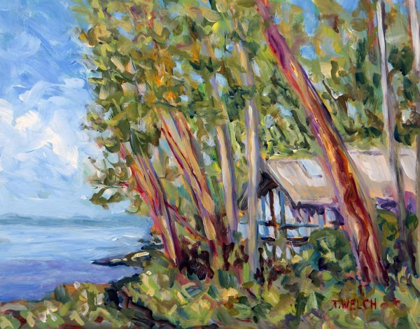Sailing Through the Trees Study by Terrill Welch