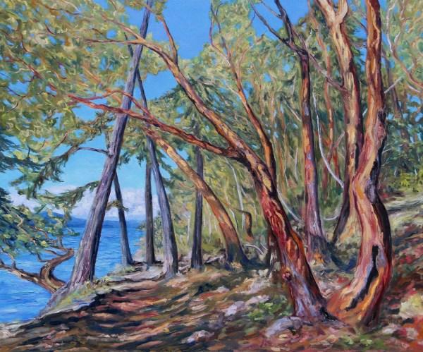 Saint John Point Trail by Terrill Welch