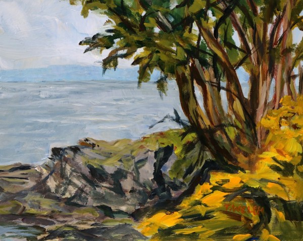 Scotch Broom and Arbutus Trees by Terrill Welch