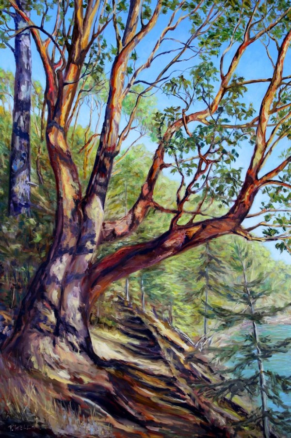 Storytelling Arbutus Tree Bennett Bay Mayne Island BC by Terrill Welch