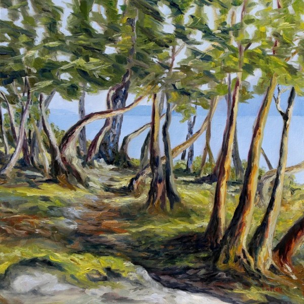 Trail in the Arbutus Trees by Terrill Welch
