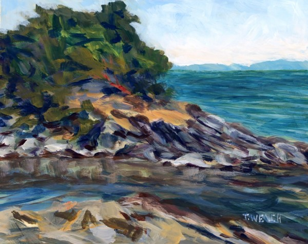 Winter Cove at Canoe Pass by Terrill Welch