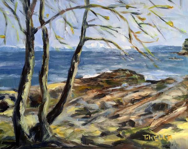 Poplars in Spring Reef Bay Study by Terrill Welch
