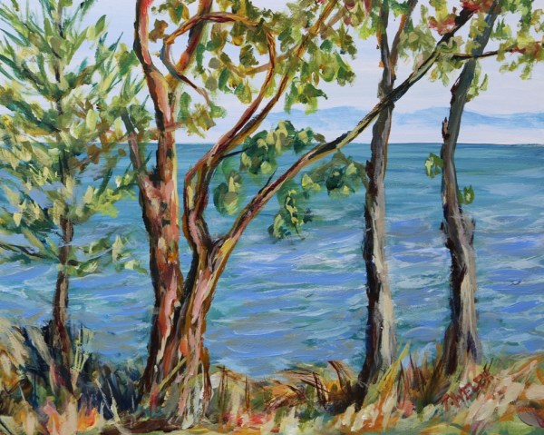 Through the Trees Isabella Point by Terrill Welch