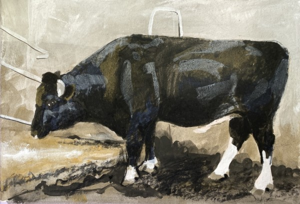 The bull by Philine van der Vegte