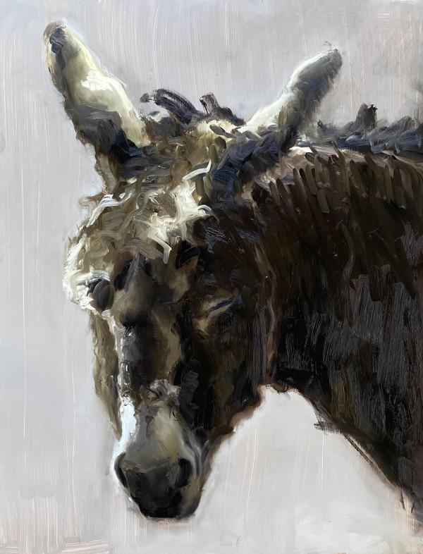Sleeping donkey by Philine van der Vegte