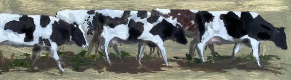 Cow study by Philine van der Vegte