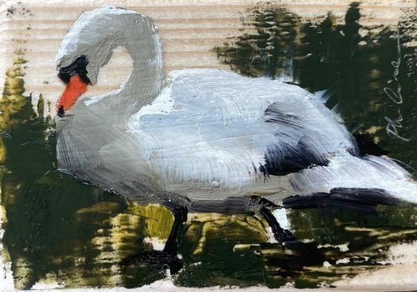 Swan II by Philine van der Vegte