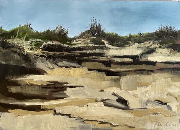 Erosion by Philine van der Vegte