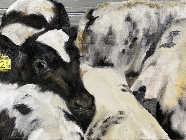 Vijf kalveren (Five calves) by Philine van der Vegte