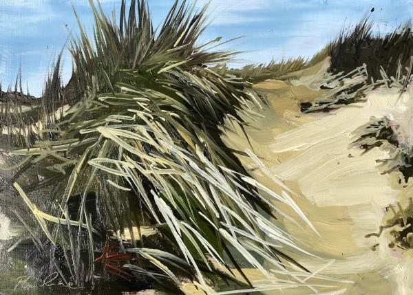 Dune path by Philine van der Vegte