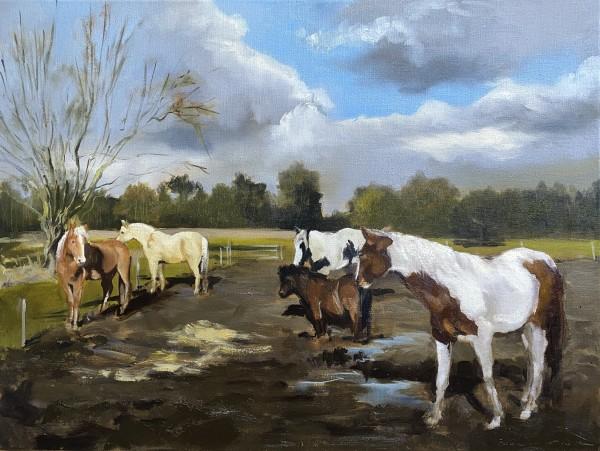 Sadira's herd by Philine van der Vegte