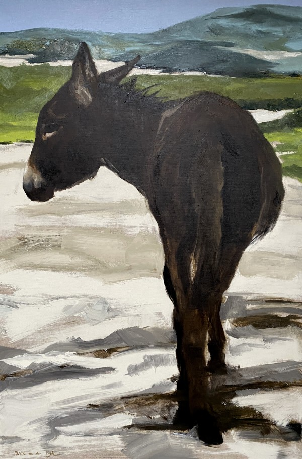 Donkey in the dunes by Philine van der Vegte