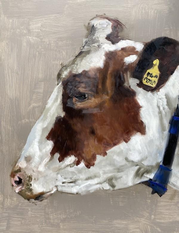 Head study of a dairy cow by Philine van der Vegte