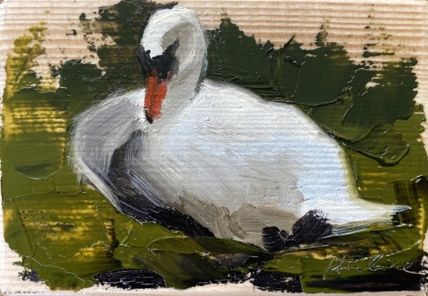 Swan V by Philine van der Vegte