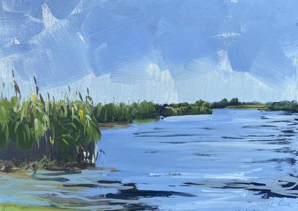 Varkensland by Philine van der Vegte
