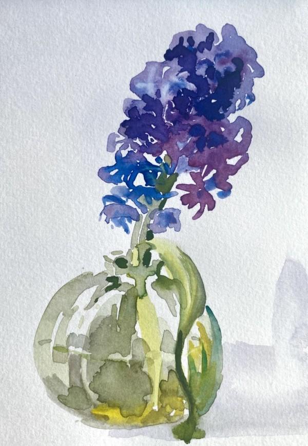 Hyacinth by Philine van der Vegte