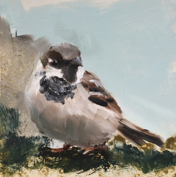 Sparrow by Philine van der Vegte