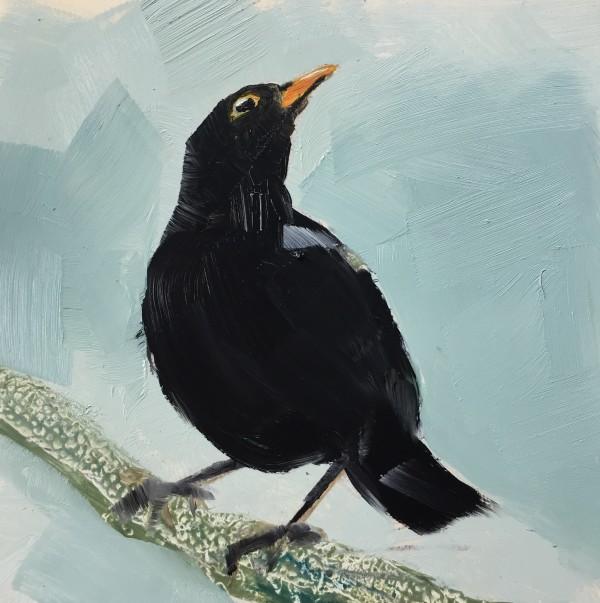 Blackbird by Philine van der Vegte