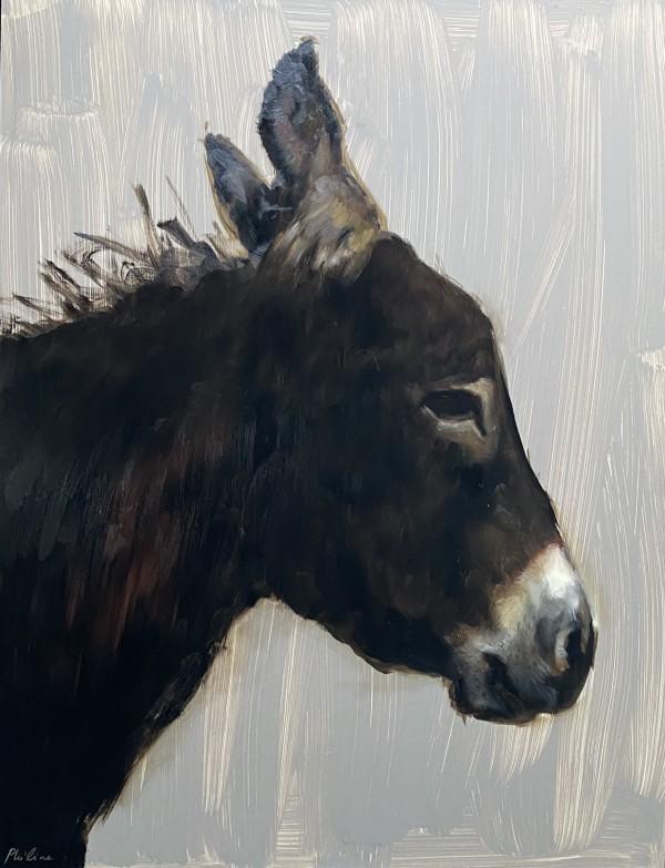 Donkey face by Philine van der Vegte