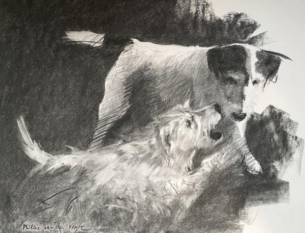 Bobby en Willy by Philine van der Vegte