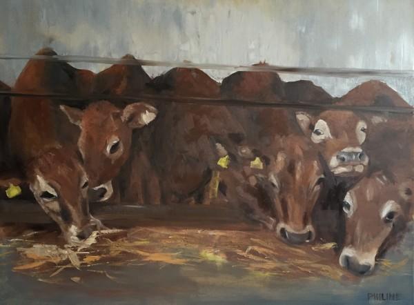 Jersey cows I by Philine van der Vegte