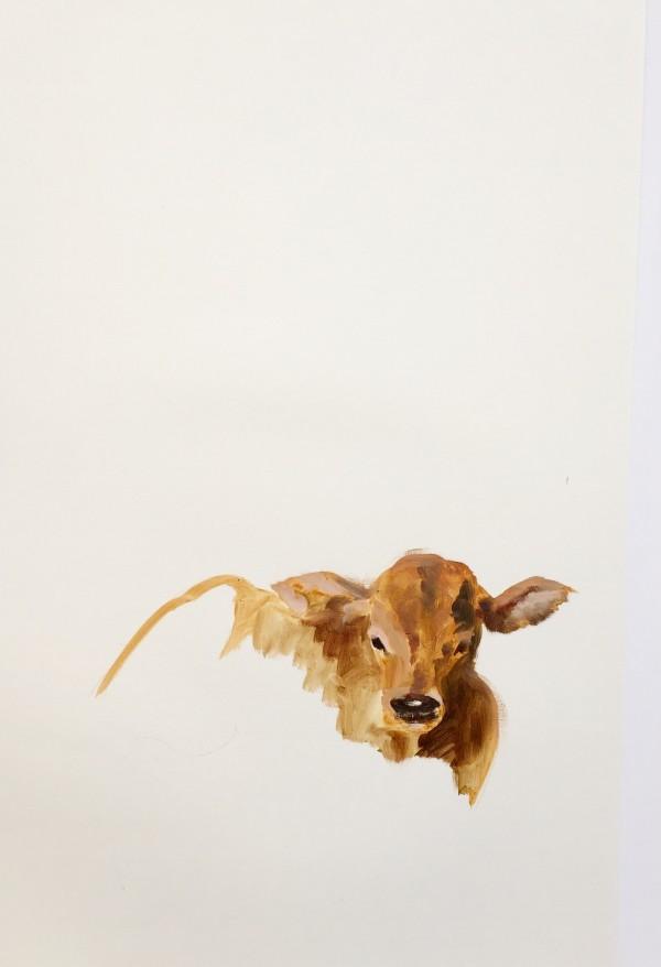 Portrait of calf #0211