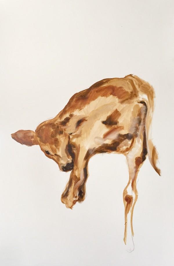 Portrait of calf #0202