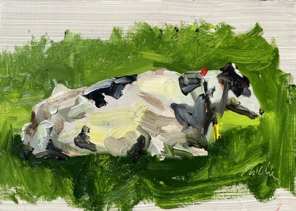 Cow study 1