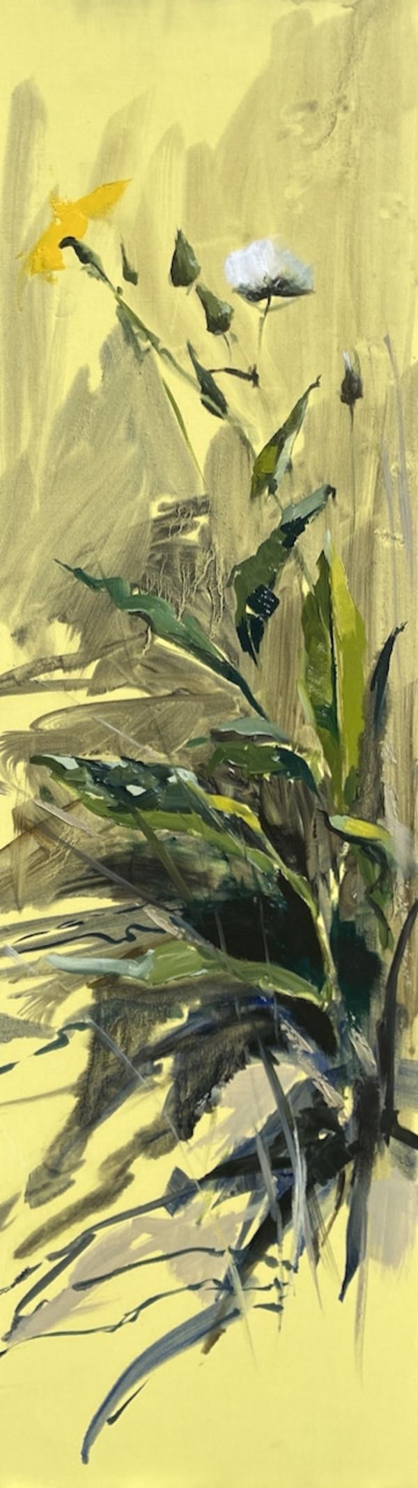 Melkdistel by Philine van der Vegte