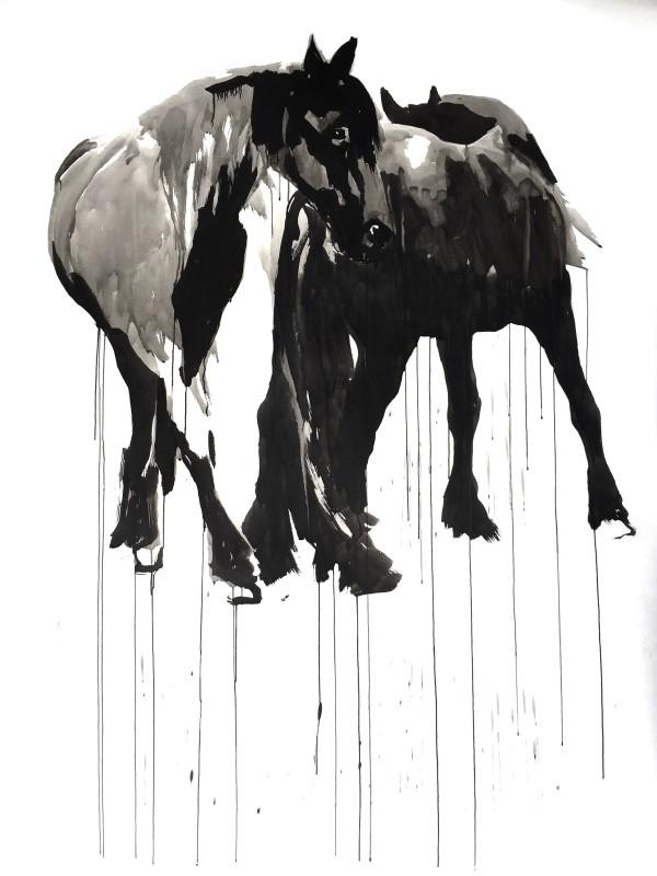 Horse study #2