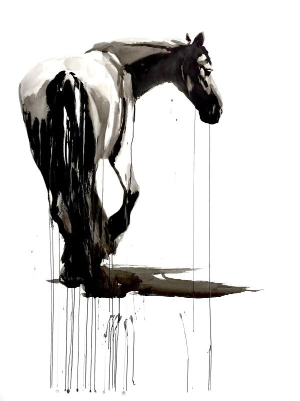 Horse study #3