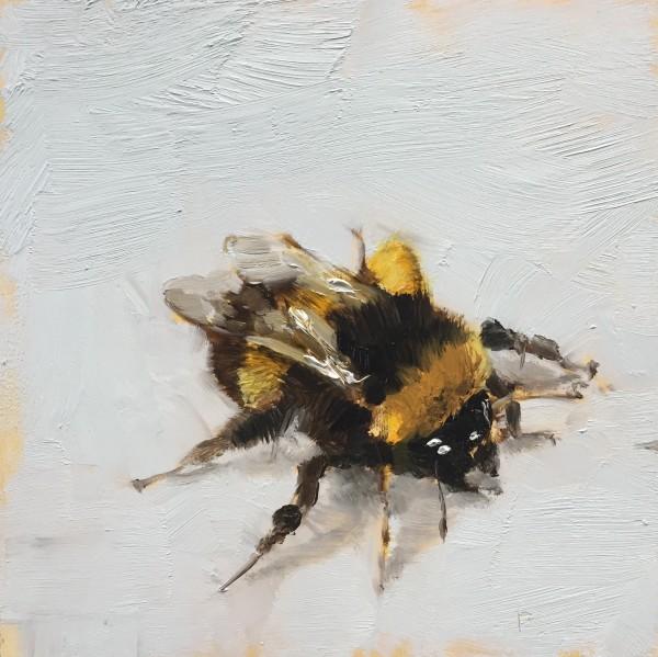 Bumblebee by Philine van der Vegte