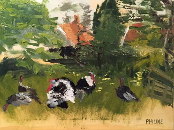 Turkeys in the grass by Philine van der Vegte