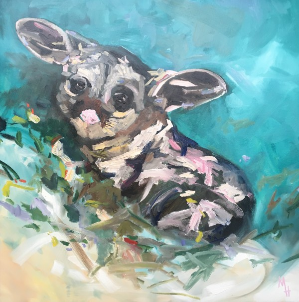 Possum by Meredith Howse