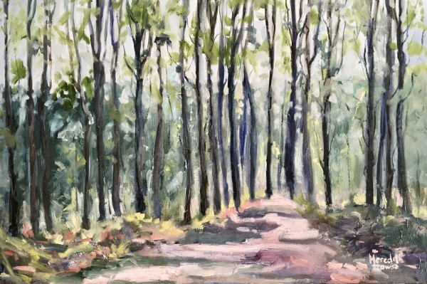 Walks on Mount Coot-tha by Meredith Howse