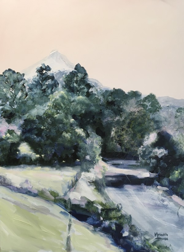 Road to Mount Warning by Meredith Howse