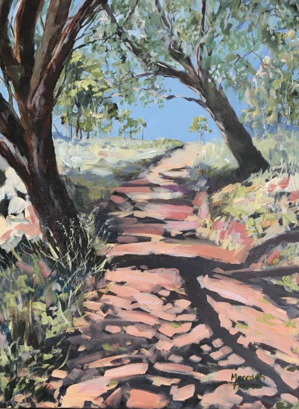 Trail of Mount Painter by Meredith Howse