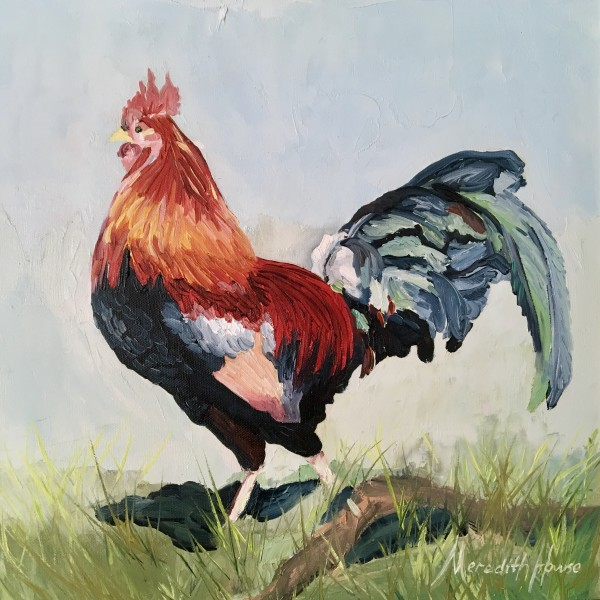 Red Jungle Fowl of Kauai  by Meredith Howse