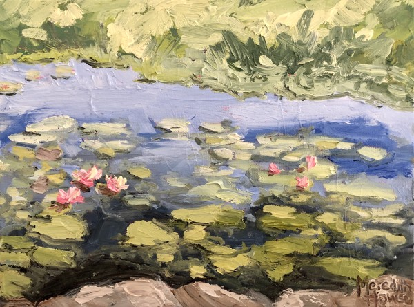 Pond at Lambing Flats by Meredith Howse